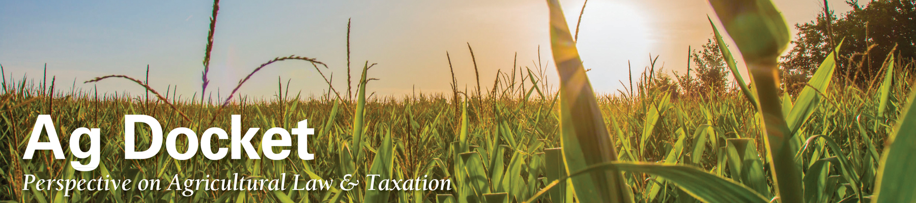 Sba Has Issued Rules For First Draw Second Draw And Increased Ppp Loans Center For Agricultural Law And Taxation