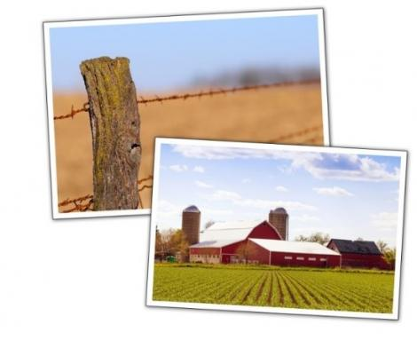Iowa Fence Requirements: A Legal Review | Center for